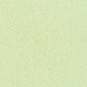 Кож.Зам Oregon 04 светло зеленый
